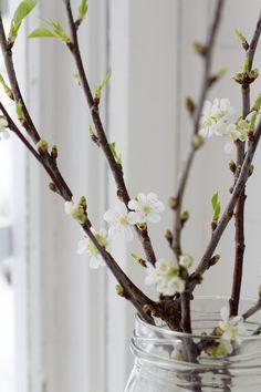 April snug & mild