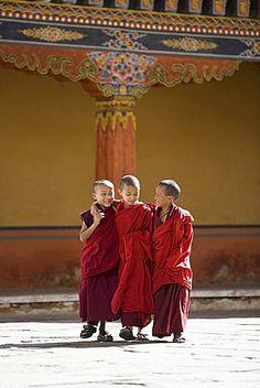 Monjes budistas jóvenes, Paro Dzong, Paro, Bután, Asia