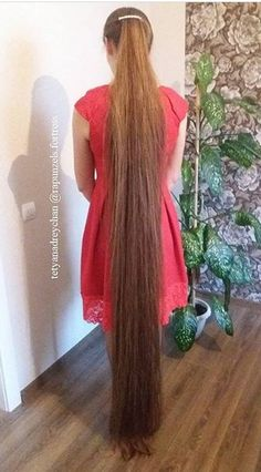 How to Maintain Healthy Hair: 100 Hair Care Tips You'll Love Long Hair Ponytail, Ponytail Hairstyles, Girl Hairstyles, Rapunzel Hair, Very Long Hair, Beautiful Long Hair, Dream Hair, Hair Care Tips, Hair Lengths