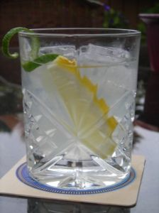 The BEST skinny girl cocktail out there. No carbs and hardly any calories. Plus, the water saves you from the dehydrating effects of alcohol. And it tastes great...no vodka taste at all when you make them correctly, just a refreshing glass of water with a twist! :)