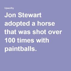 Jon Stewart adopted a horse that was shot over 100 times with paintballs. 05.23.16