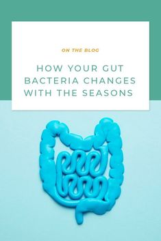 Gut health has been front and center when it comes to one of the most talked-about ways to support optimal wellness, but there's much more to know than just taking any old probiotic. We're sharing what you need to know about how our gut bacteria changes with the seasons and the best way to support healthy digestive balance all year round. Help Losing Weight, Weight Loss Help, Weight Loss Snacks, Lose Weight, Gut Microbiome, Gut Bacteria, Regular Exercise, Gut Health, Smooth Skin
