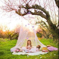 The canopy hanging from a tree feels like this could be a 'home' for the fairies. The tree being almost bare creates a woody earthy feel. Lastly with the child pictured it creates a good basis for what it could possibly look like when done. --- Gonzalez, M., n.d. [i]Fairy picnic[/i], Available: http://media-cache-ak0.pinimg.com/originals/6c/30/17/6c30175542132f5bfaab17909b621ec4.jpg (Accessed 23 March 2014)