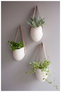 Wall Option hanging succulents straight across the wall in a horizontal line) - white ceramic + leather strap and light and polish to a dark wall - plants add element of movement and softness to a space wall decor Unique Air Plant Vessels Hanging Succulents, Hanging Planters, Hanging Herbs, Diy Hanging, Succulent Planters, Hanging Gardens, Succulent Wall, Wall Hanging Decor, Wall Hangings