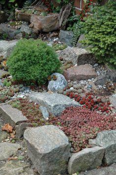 HAVETID: pedra de granito entre as plantas do jardim.