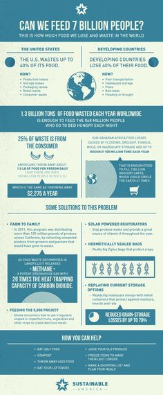 Can we feed 7 billion people? This is how much food we lose and waste in the world and how to prevent it. #infographic