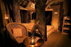 Cuddle up in a Tree House - Wild Canopy Reserve, Tamil Nadu INDIA