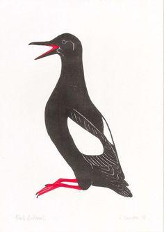 Walls - Black Guillemot woodcut print   Popweed