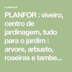 PLANFOR : viveiro, centro de jardinagem, tudo para o jardim : arvore, arbusto, roseiras e tambem bonsai, plantas trufeiras -