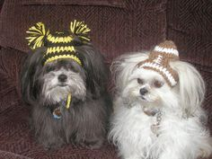 Dog hat - FOOTBALL or  CHEERLEADER - choose team colors - Humorous - 2 to 20 lb pets- made to order on Etsy, $10.00