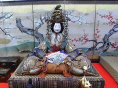 由利本荘ひな街道 (Yurihonjo City Doll Route)  The Yurihonjo Hinakaido in Yurihonjo, Akita is an event held every March in which visitors follow a public map display of traditional Hina dolls at over 50 different locations within the city. The doll displays vary in size, style, and history.