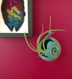 Hanging planter for airplant - Tillandsia. Felted wool pod, Succulent planter, Air plant holder. An original and unique gift.