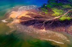 Natureza: Lago Bogoria, por Franco CAPPELLARILago Bogoria