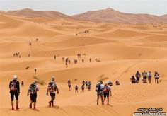 Tourist groups in a Desert Trip, Libya