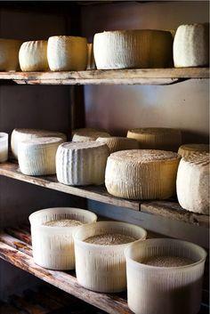 cheese stash. sara remington photography