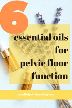 Here are 6 amazing essential oils that help with maintaining optimal pelvic floor function. Prevention and healing of pelvic floor dysfunctions such as urinary leakage starts with self care routine. Doterra Essential Oils, Essential Oil Blends, Fennel Oil, Esential Oils, Massage Techniques, Pelvic Floor, Natural Medicine, Stress And Anxiety, Cell Regeneration