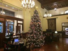 I-House Christmas Tree http://ihberkeley.wordpress.com/2014/12/19/an-ode-to-the-i-house-christmas-tree/