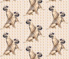 Border Terriers and paisley fabric by dogdaze_ on Spoonflower - custom fabric