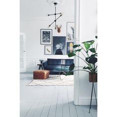 http://www.fermliving.com/webshop/shop/green-living.aspx