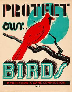 Protect Our Birds. Pennsylvania WPA poster