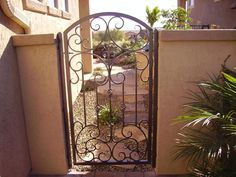 Courtyard Gates : Great Gates and Whiting Iron in Phoenix AZ | The Valley's Leader In Premium Architectural Iron Products