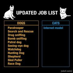UPDATED JOB LIST Paratrooper Search and Rescue Drug sniffing Bomb sniffing Patrol dog Seeing-eye dog Watchdog Hunting Dog Shepherd Sled Puller Race Dog Internet model - iFunny :) List Of Jobs, Job List, Merry Christmas Funny, Christmas Cards, Morning Memes, Seeing Eye, Clean Memes, Paratrooper, Sports Memes