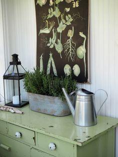 Nordic, Nordic Home, House Styles, Decor, Interior Design, Home, Interior, Nature Decor, Old Houses