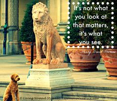 It's not what you look at that matters, it's what you see. – Henry David Thoreau