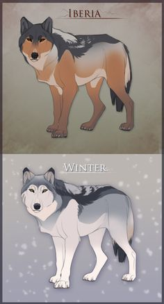 Natural Wolf Adopts (points) by Tazihound on DeviantArt