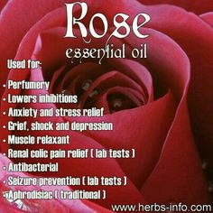 10 Best Rose Young Living Images Young Living Essential Oils