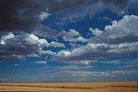Cumulus Cloud Image Gallery | UCAR Center for Science Education
