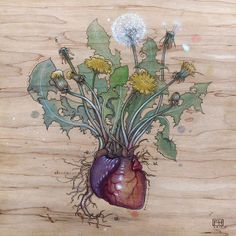 "Dandelion Heart by Fay Helfer pyrography, pigments and pastel on maple (turmeric, beet, and indigo) ~ 12"" x 12"""