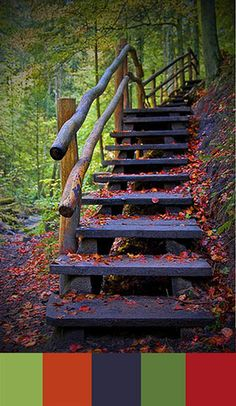 Delicious colors of fall on a staircase to who knows where!