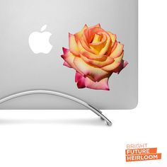 Red Yellow and Orange Rose Flower Bud - Printed Vinyl Decal - Perfect For laptops tablets cars trucks SUVs and more! by BrightFutureHeirloom