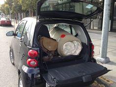Smart Car and Keetsa Mattress! Lol #keetsa #mattress #smart #car #sanfrancisco