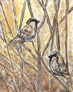 Sparrows  #art #contemporary #watercolor #watercolour #painting