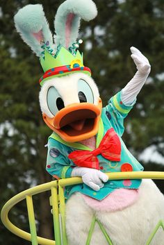 *DONALD Tokyo Disney Resort, Tokyo Disneyland, Disney Dream, Cute Disney, Disney Parks, Disney Pixar, Disney Characters Costumes, Donald And Daisy Duck, Disney Magic Kingdom