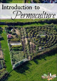 Introduction to Permaculture l Why you want to grow your own food with permaculture l Homestead Lady.com