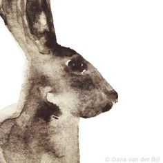 by Dana van der Bijl 'Hear' Hare Watercolour