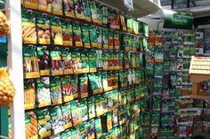 Verschillende soorten zaden