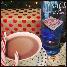 Spend  Christmas with the #1 cocktail! Pinnacle® Peppermint Bark and hot chocolate. Cheers.