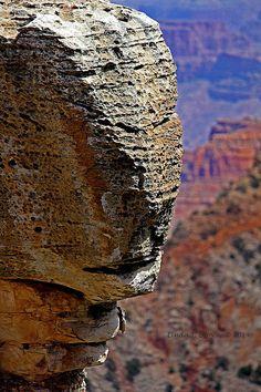 Buffalo Head Rock In Grand Canyon