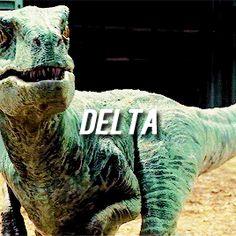 Second eldest raptor Delta of the Jurassic World raptor squad Jurassic world Limited Edition! at http://www.bestsellerlist.co.uk/2015/08/jurassic-world.html #jurassicworld