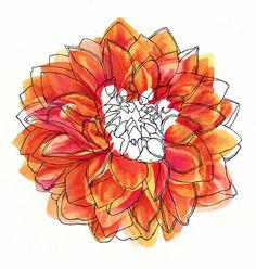 flower watercolor and line drawing