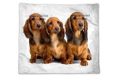 Dog Blankets | Dog Fleece & Woven Blankets at http://www.visionbedding.com/Blankets/Dog.php