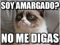 Meet Grumpy Cat memes that will make you LOL. Check Angry Cat Hate, Good and other popular memes. Check also for Grumpy Toad and Grumpy Turtle. Grumpy Cat Quotes, Gato Grumpy, Funny Grumpy Cat Memes, Funny Cats, Funny Jokes, Grumpy Kitty, Fun Funny, Cat Jokes, Memes Humor
