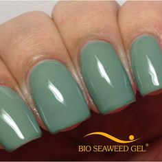 Image of UNITY All-In-One Colour Gel Polish - 220 Ivy Shellac, Gel Nails, Gel Color, Seaweed, Gel Polish, Unity, Projects To Try, Nail Designs, Colours