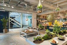 Today's Special Jiyugaoka by Schemata Architects | 設計•香港
