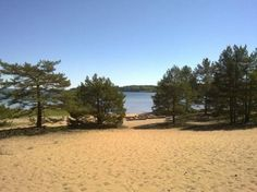 Hanko beach is many kilometres long sand beach in most southern point in Finland. Those pines are growing in the sand. I've been walking through this beautiful sand beach few times. There are beautiful old villas / big lace summerhouses by the beach!
