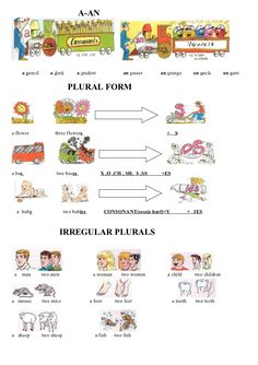 a-an-plural-form by hcd68hly via Slideshare